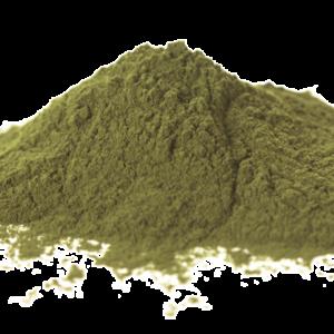 See the Weed - Seaweed dog dental care - Ascophyllum nodosum